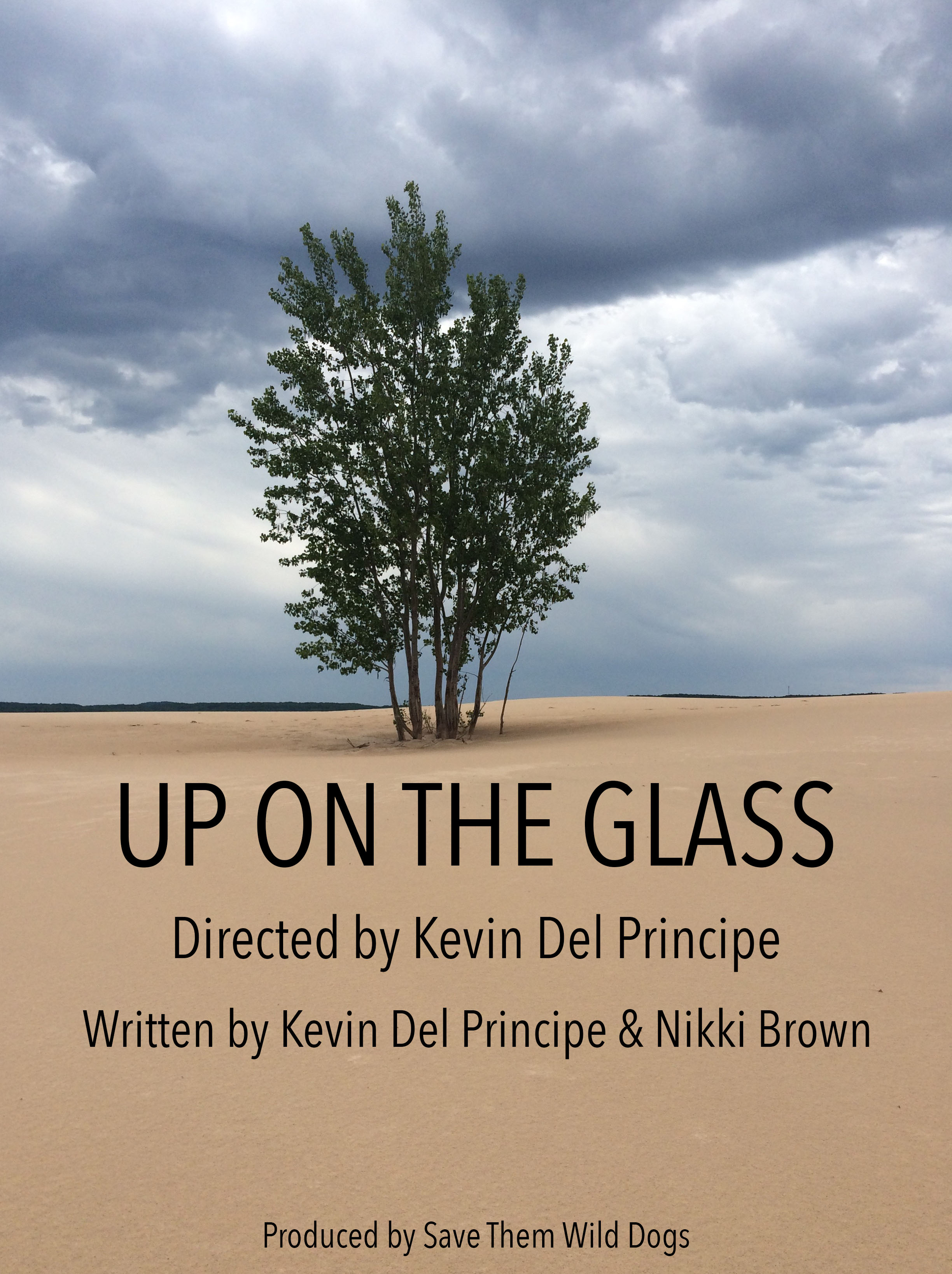 Up on the Glass Poster copy